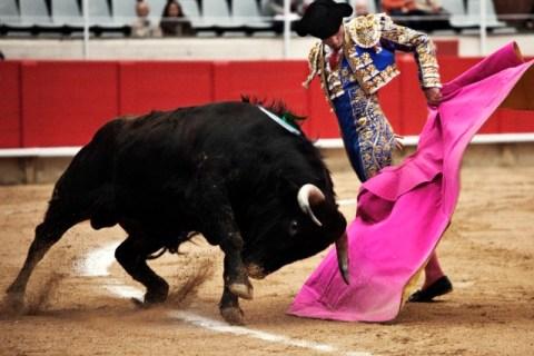 Spain - Bullfighting - Matador Jesus Fernandez