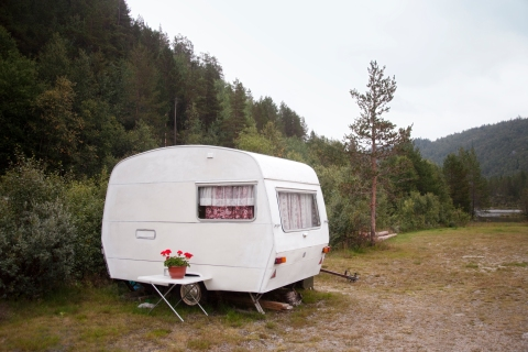 Travel trailer parked beside a forest