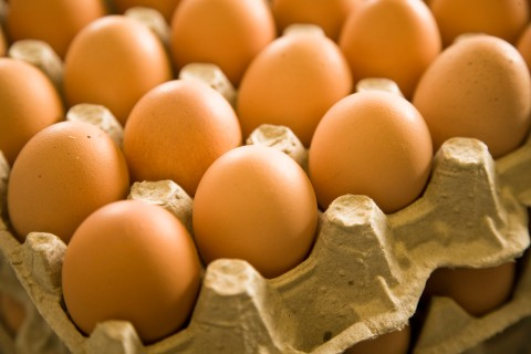 Carton of brown eggs