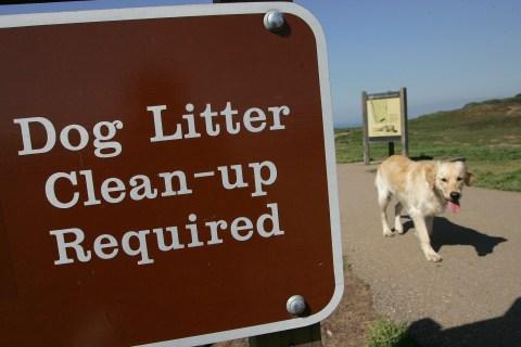 Dog Waste Sign in San Francisco