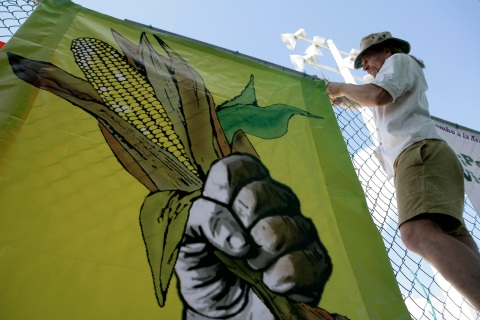 Activist in Cancun