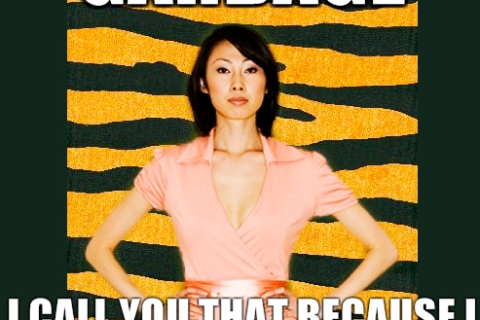 Amy Chua meme generator takes off on the internet (Photo from Tiger Mom Says)