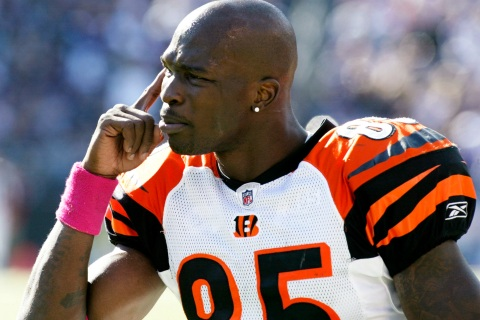 Bengals' Ochocinco gestures to a teammate from the sidelines during the Bengals' game against the Ravens in Baltimore