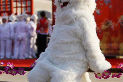 Chinese Celebrate The Year Of Rabbit