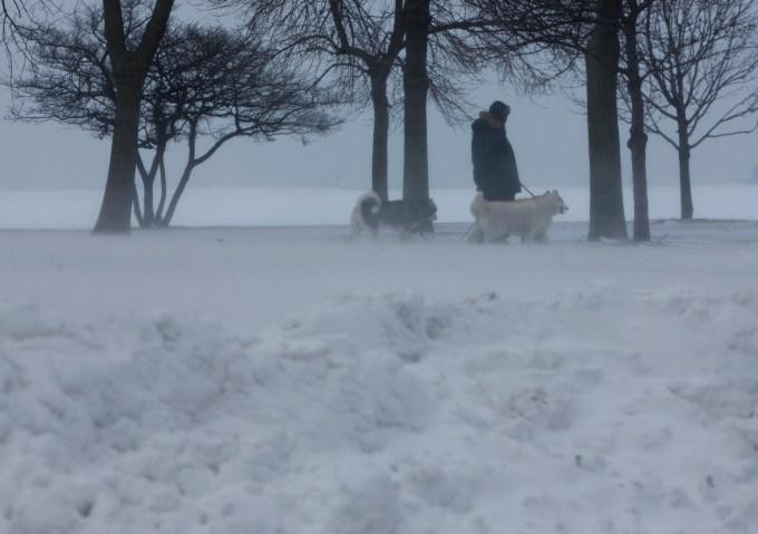 The Snowpocalypse's Best Photos