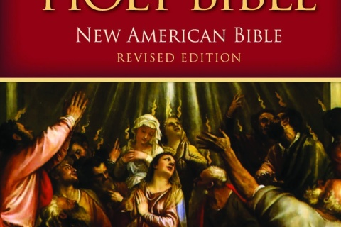 Revised New American Bible