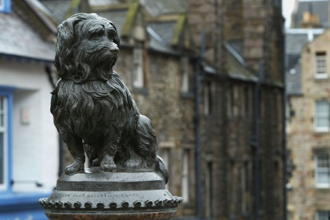 The statue of Bobby, a legendary Skye terrier, watches over Greyfriars Cemetery in Edinburgh.