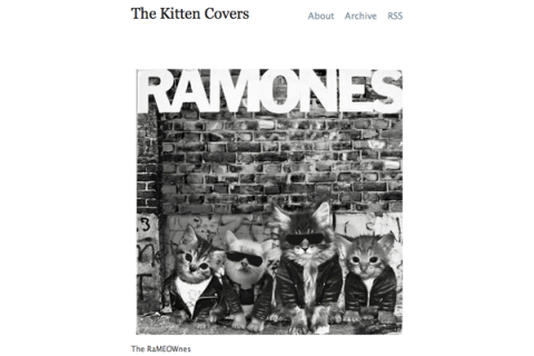The Kitten Covers