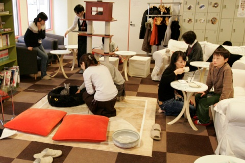 Customers play with cats at the Cat Cafe Calico in Western Tokyo