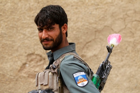 An Afghan policeman carries a poppy flower in the barrel of his gun, in the Maiwand district of Kandahar province