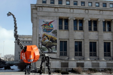 A 40-foot tall Brachiosaurus statue wears a replica jersey of Chicago Bears' player Brian Urlacher in front of the Field Museum of Natural History in Chicago
