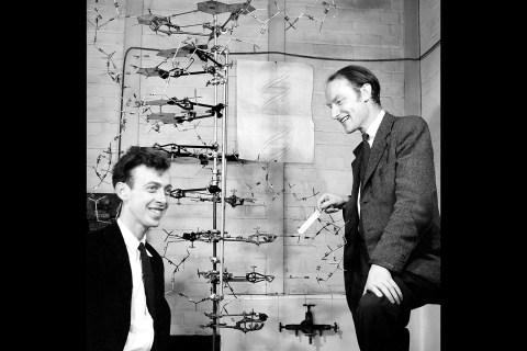 Crick-and-Watson