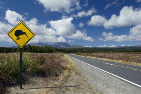 New Zealand street sign