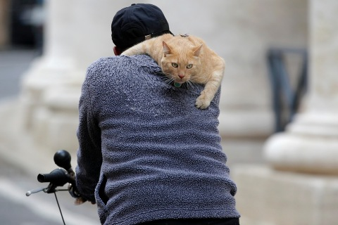 A man rides his bicycle with a cat on his shoulder next to Saint Peter's Square in Rome
