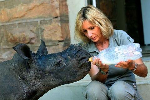 nf_rhino_poaching_0408