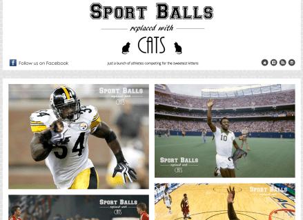 http://sportballsreplacedwithcats.tumblr.com/
