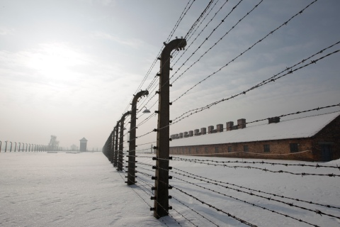 Barbed wires fences are pictured at the former Auschwitz -Birkenau death camp in Oswiecim