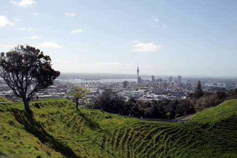 A View Of Auckland City From The Top Of Mt Eden On