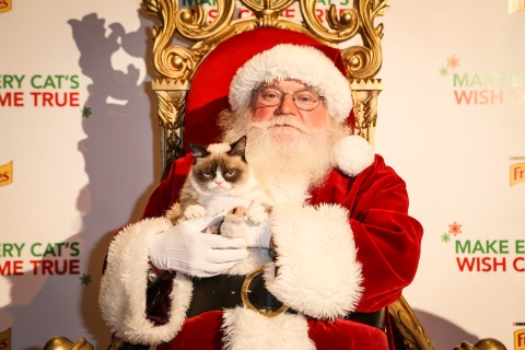 grumpy-cat-christmas-santa