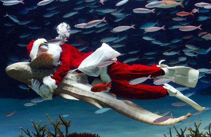 Japan Santa Claus