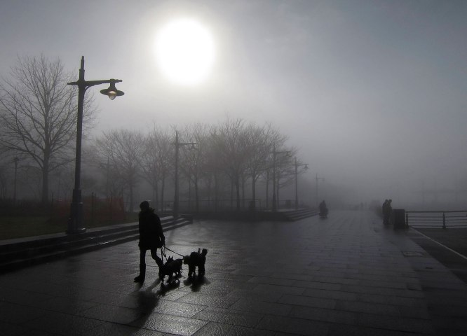 A woman walks her dogs in a park along the Hudson River as a dense morning fog shrouds the skyline of Lower Manhattan in New York